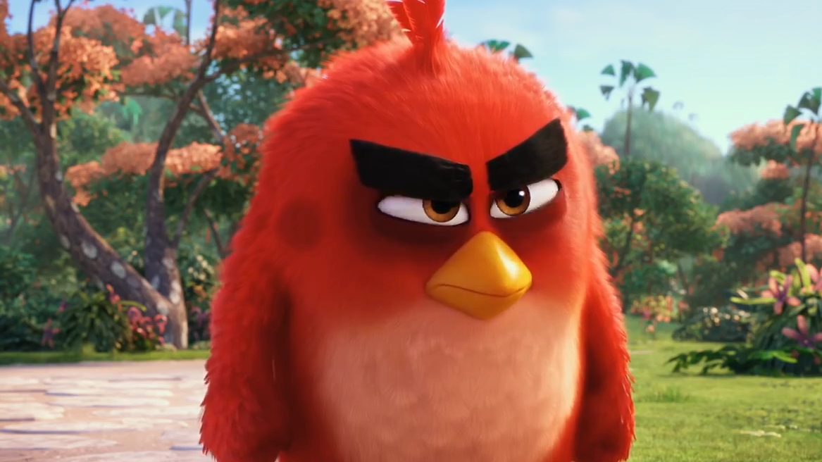 Eye Brows - Angry Birds